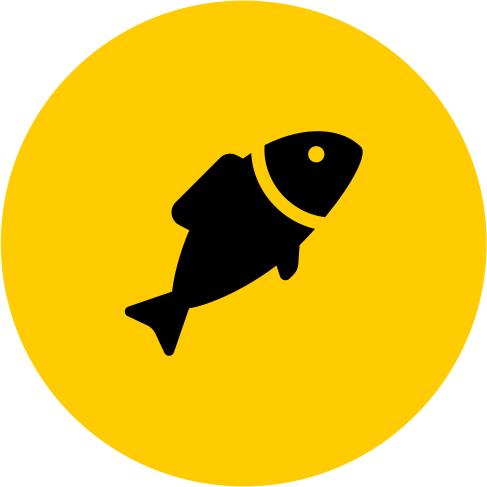 Книга Рыбака
