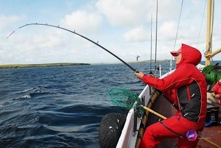 Удочки для морской рыбалки