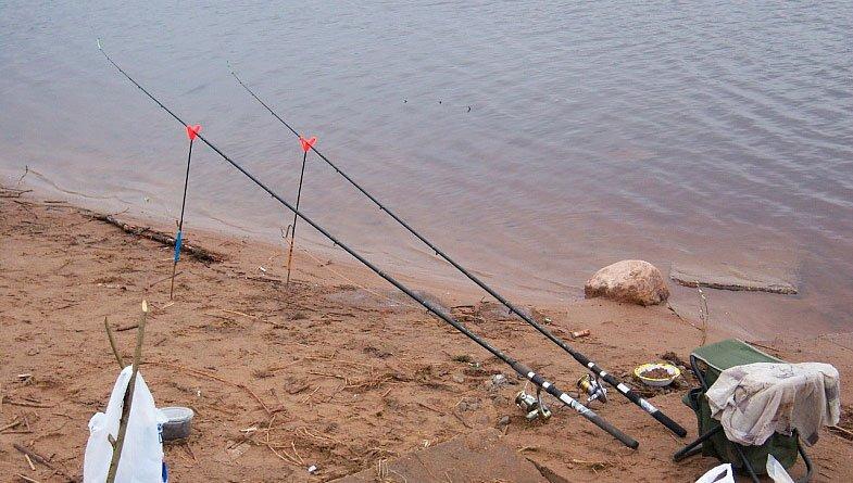 Ловля леща на фидер на реке